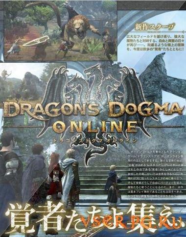Постер игры Dragons Dogma Online