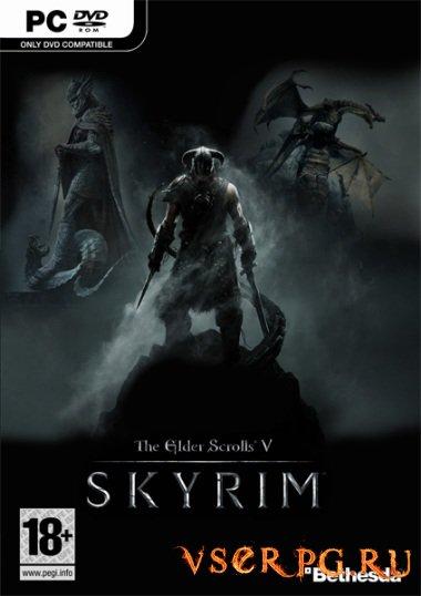 Постер игры Скайрим