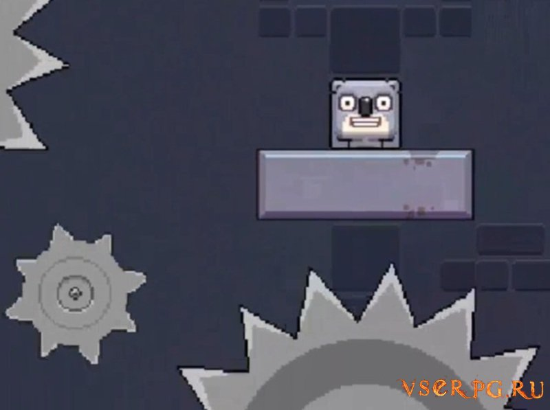 Cube Koala screen 1