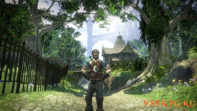 Fable 2 screen 2