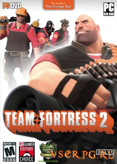 Постер игры Team Fortress 2