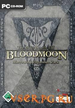 Постер игры Bloodmoon