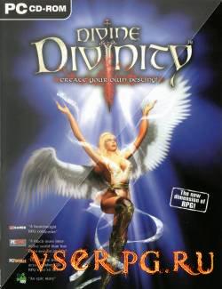 Постер игры Divine Divinity