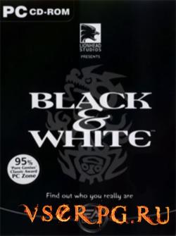 Постер игры Black & White