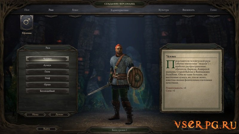 Pillars of Eternity The White March screen 1