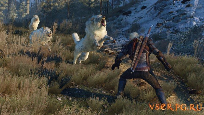Ведьмак 3: Игры кошек и волков screen 3
