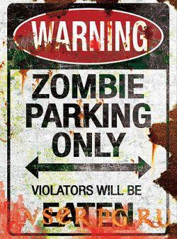 Постер игры Zombie Parking