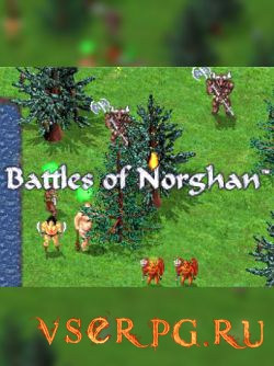 Постер игры Battles of Norghan