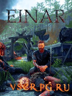 Постер игры Einar