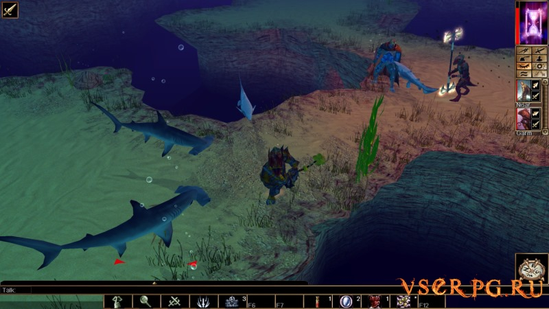 Neverwinter Nights: Pirates of the Sword Coast screen 1