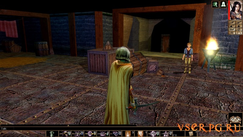 Neverwinter Nights: Infinite Dungeons screen 2
